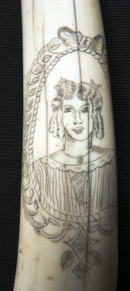 268pxscrimshaw_walrus_tusks_close_2